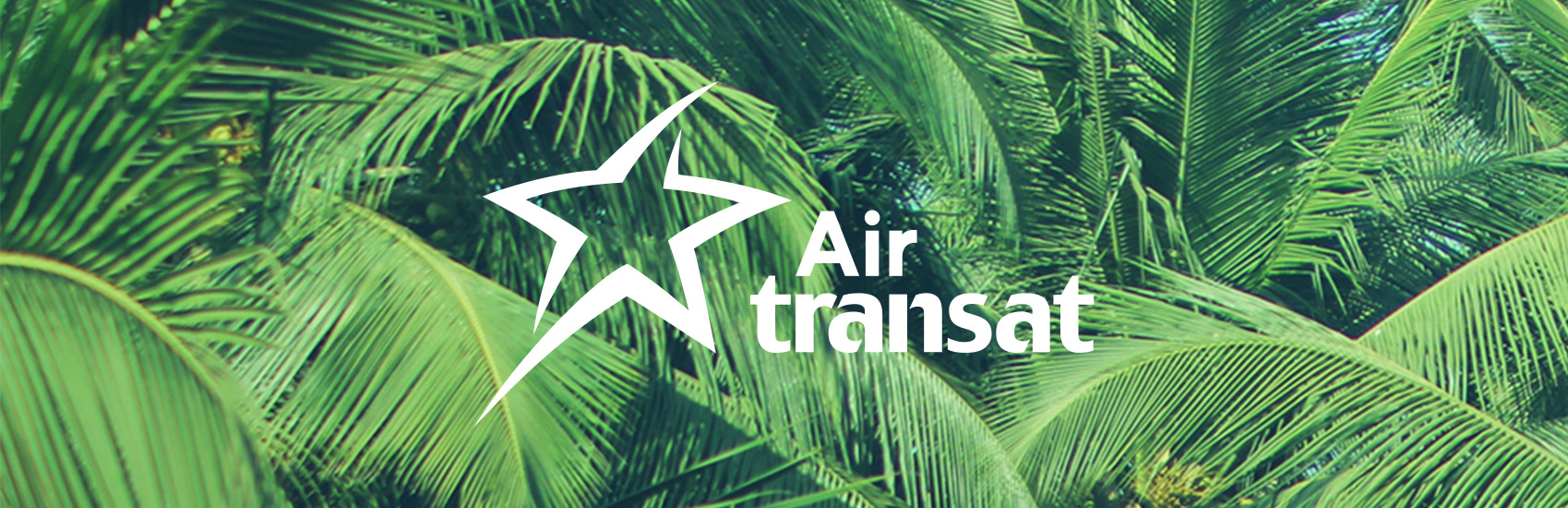 Keep Palm and Travel On with Air Transat 0