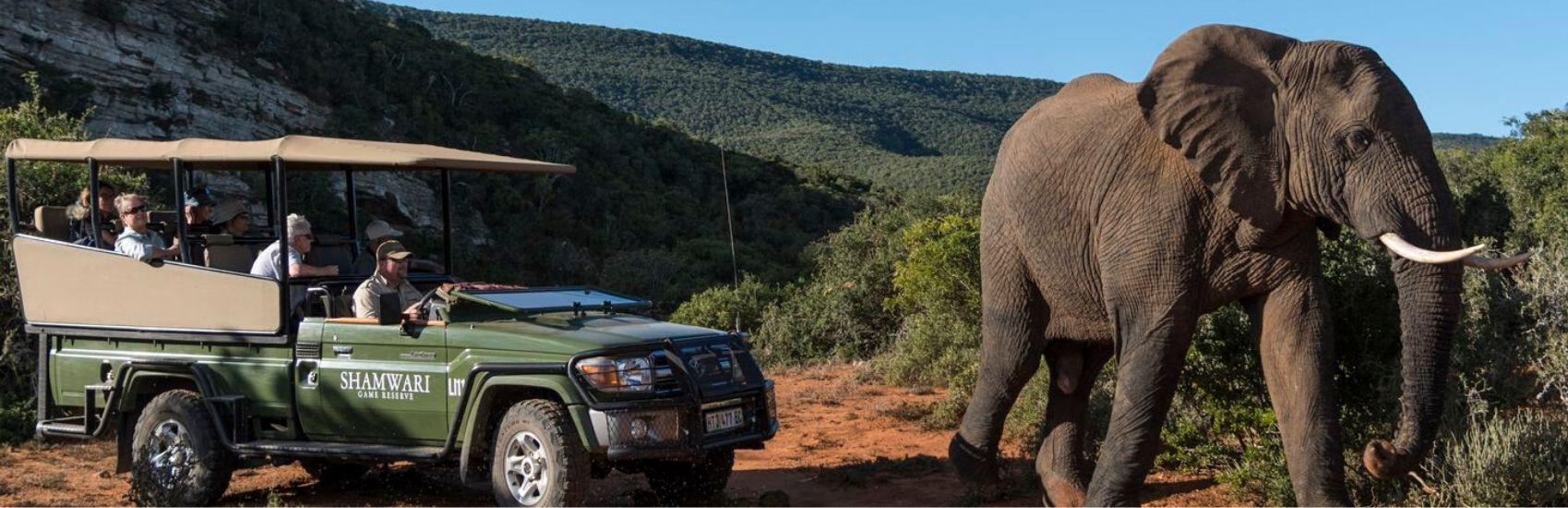 Majestic South Africa with African Travel 0
